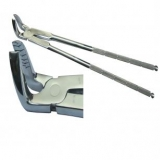 Root & Fragment Extractor Long 19